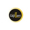 CAPITANI IT SOLUTIONS