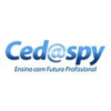 CEDASPY COMPUTER TRAINING